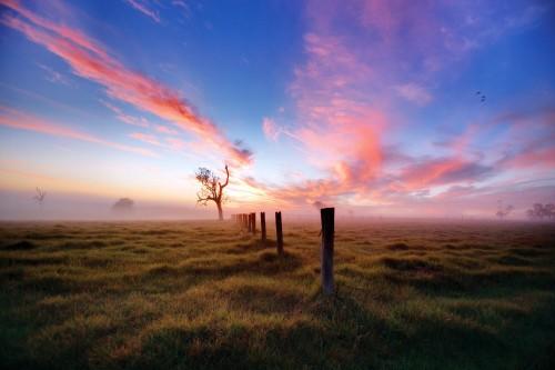 johnfryz_landscape_Landcom-01